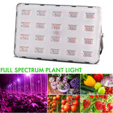 500W 100W LED Grow Light Hydroponic Full Spectrum Flower Bloom Indoor Outdoor Seeds Planting Lamp AC220V
