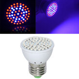 Full Spectrum E27 3W 60 LED Grow Light 41 Red 19 Blue voor plant hydrocultuur AC220V