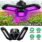 108 LED Grow Lights Panel Full Spectrum E27 LED Plant Growth Greenhouse Lamp