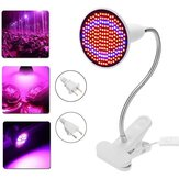 E27 20W 200 LED Planta Grow Light Lámpara Bulbos Clip para cultivo de flores Green House