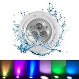 6W AC12V 3 LED Recessed Swimming Pool Light Spa RGB White Fountain Night Lamp