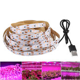 LED Grow Light Strip Full Spectrum 5V USB 2835 LED Plantas de interior em crescimento