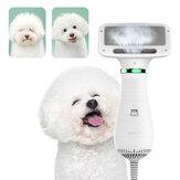 Toelettatura per animali domestici 2 in 1 Capelli Soffiatore per asciugatrice con Slicker Slicker Pennello Temperatura regolabile a basso rumore per strumento per toelettatura di cani e gatti