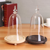 Glass Display Dome Cloche Box with Wooden Base Inspired By Beauty and the Beast