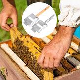 Acero inoxidable Bee Destapador de colmenas Tenedores de miel Mango raspador Bee Mantenimiento herramientas