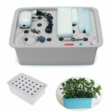 110V / 220V 24 Hole Soilless Hydroponic Box Cultivation Equipment Container for Vegetable Planting Growing Container