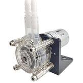 Korrosionsschutz peristaltisch mit großem Durchfluss Pumpe Vakuum Pumpe Absaugung Pumpe Selbstansaugung Pumpe Viskos Pumpe 12 V / 24 V rechtwinklig Pumpe