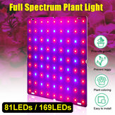 Ultra Thin 81 / 169LEDs Plant UV Grow Light Vollspektrum Veg Lampe für Indoor Hydroponic Plant Flower 110-240V