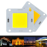 LUSTREON 20W 30W 50W White Warm White 120LM/W COB LED Chip Source for Flood Light DC30-40V