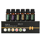 RHJY 6Pcs / Set 10ml Pura Olio Essenziale Aromaterapia Naturale Pianta Terapeutica