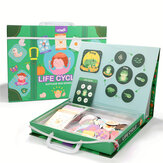 Early Childhood Educational Toys Puzzles Magnetic Learning Life Cycle Puzzles Educational Toy Puzzles