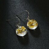 Vintage Handmade Natural Dried Flower Earrings Geometric Round Transparent Glass Pendant Earrings