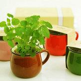 Keramiek DIY Mini Koffie Kopje Potplanten Kantoor Bureaublad Installatie Decor