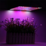 225LED Grow Light Blue & Red & White & Orange lampada Ultrathin Panel Hydroponics Pianta da interno Veg Flower AC85-265V