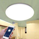 48W WW+CW WIFI Smart Ceiling Light Stepless Dimming APP Control Ceiling Lamp Fcmila Bedroom Works with Alexa Google Home IFTTT