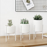 White Ceramic Flower Pot Plant Succulent Nordic Rack Display Stand Holder Hydroponic Planter Decor