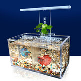 LED-Licht Acryl klar Aquarium Mini Betta Aquarium Desktop Wasser Pumpe