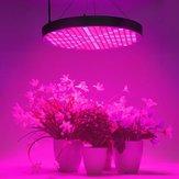 250LED 50W UFO Grow Light Full Spectrum Veg Flower Indoor Plant Panel lampy