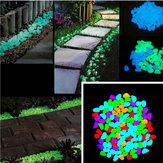 100 Unids / set Luminous Glow Pebble Stones Acuario Garden Walkway Rock Decoraciones para el hogar