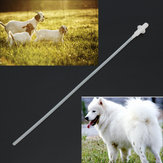 50X Canine Dog Sheep Goat Artificial Insemination Breed Whelp Soft Catheter Plastic Rod