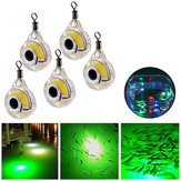 ZANLURE 5 Pcs Underwater LED Fishing Lamp  Fluorescent Glow Bait Night Light