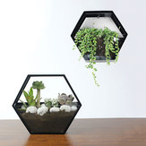 Handmade Acrylic Chlorophytum Flower Pot Scindapsus Hexagon Hanging Wall Decoration