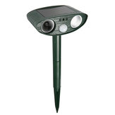 FOCUSPET Repeller Animal Ultrasonic Solar Powered Outdoor Camundongos PIR Movimento Sensor