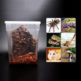 Transparent Plastic Display Box Insect Reptile Breeding Feeding Tub Turtle Tank 20*20*25
