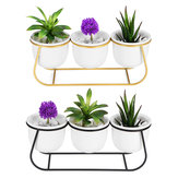 Ceramic Succulent Plant Flower Pot Bonsai Holder Home Tabletop Garden Decor With Stand