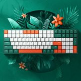 iQunix F96 Jungle Mystery 100 Keys 96% Layout NKRO USB Wired Cherry MX Switch PBT Keycaps RGB Mechanical Gaming Keyboard for PC Laptop