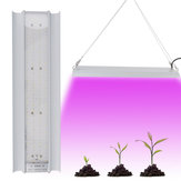 100W LED Grow Light Full Spectrum Hydroponic Indoor Plant Veg Bloom Growth Lamp