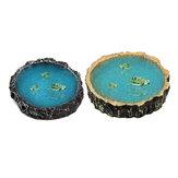 Sürüngen Besleme Kase Gıda Su Çanak Besleyici Kaplumbağa Kertenkele Kaplumbağa Amfibi Pet Bowl