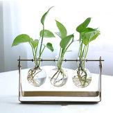 Desktop Glas Planterpærevase med Classic massivt jernstativ og metal drejelig holder til hydrokulturplanter Hjem Have Bryllupsdekor