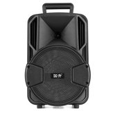 Outdoor Portable 8 inch bluetooth Speaker Music Player for Karaoke Square Dance