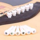 Puntale da 6 pezzi per chitarra per osso di bovino con perni terminali Abalone Dot Bridge per chitarra acustica