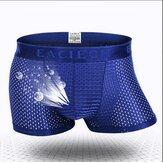 Mens Modal Boxer Brief respirável Shorts de luz sólida Elastic Sports Underwear
