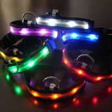 Size M Nylon Safety Flashing Glow Light LED Pet Dog Collar