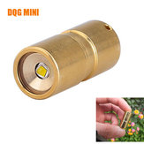 DQG Fairy Brass XP-G2 R5 10180 Mini LED Flashlight With Tritium Vials