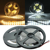 5M Wit / Warm Wit 5630 SMD Niet-waterdichte 300 LED Strip Light DC12V