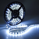 300 LED Super Bright 5050 SMD Waterproof White Flexible Strip 5M 12V