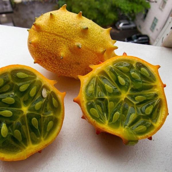 Egrow 20 Unids / pack Kiwano Melon Semillas Semillas de pepino africano Jardín de hortalizas de invernadero Frutales