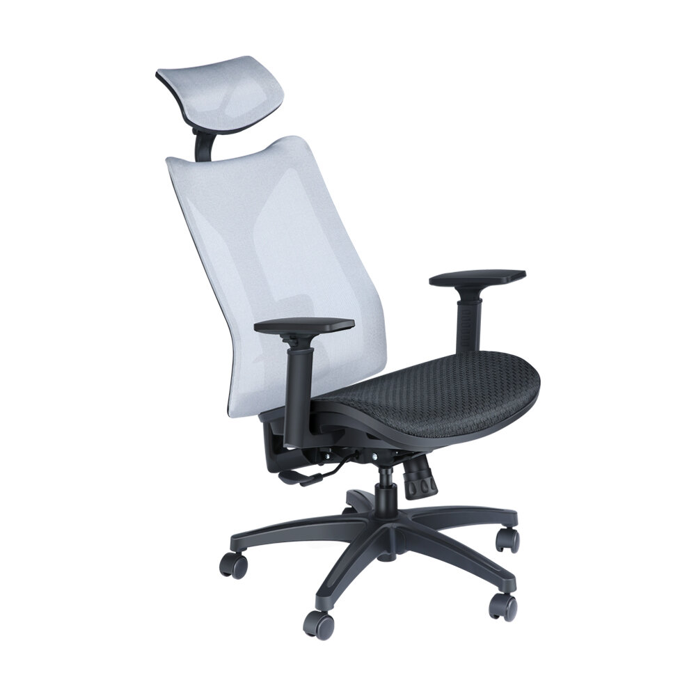 BlitzWolf® BW-HOC4 Mesh Chair Ergonomic Design Office Chair With Lumbar Support & Tilt + Rocking Removable And Adjustable Herdrest Office Home