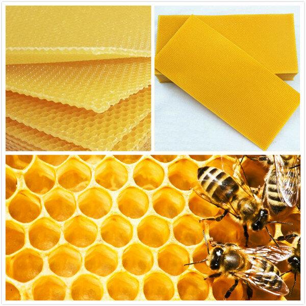 30Pcs Honeycomb Foundation Bee Hive Wax Frames Waxing Beekeeping Equipment Bee Hive Comb Honey Frames