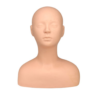 Soft Acupoint Training Mannequin Head Model Acupuncture Point Massage Teaching Beauty Salon